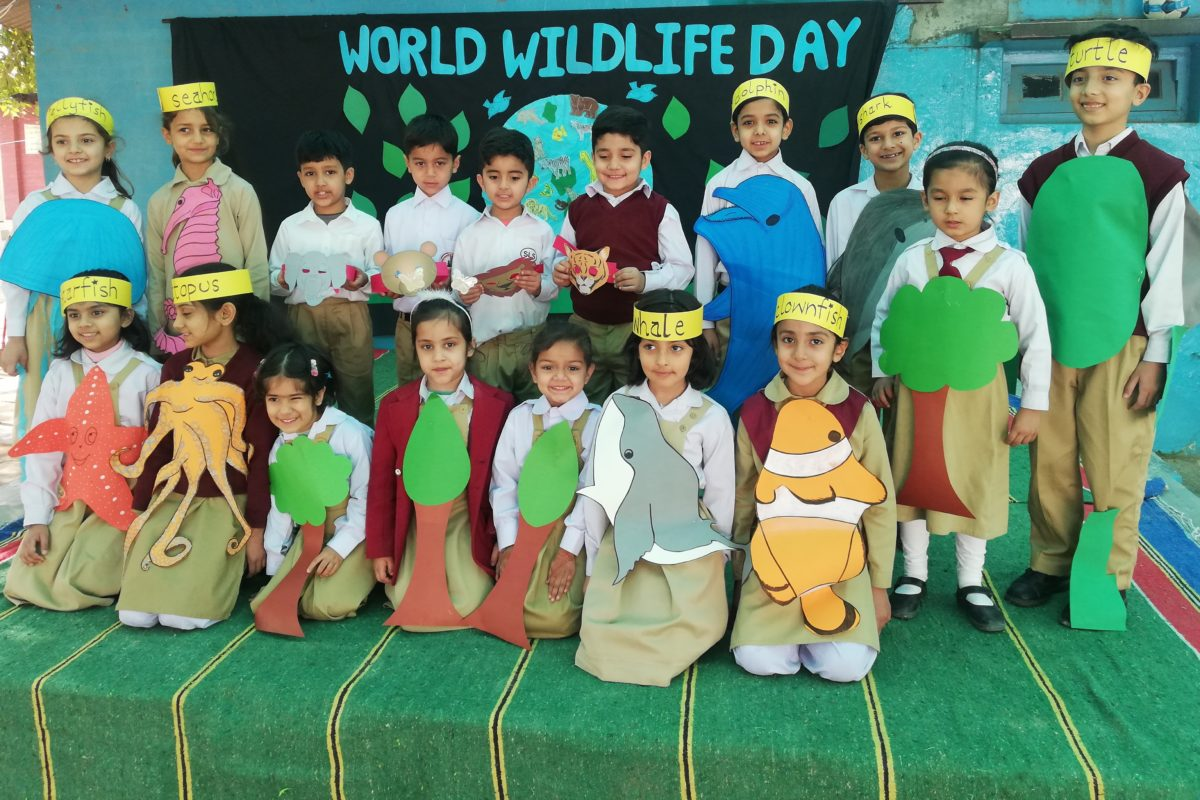 Wildlife Week celebrated at SLS